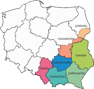 Region południowy